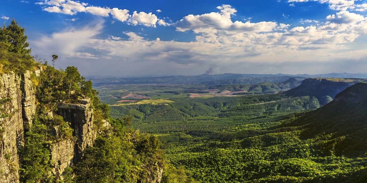 View_from_Gods_Window_Panorama_Route_South_Africa