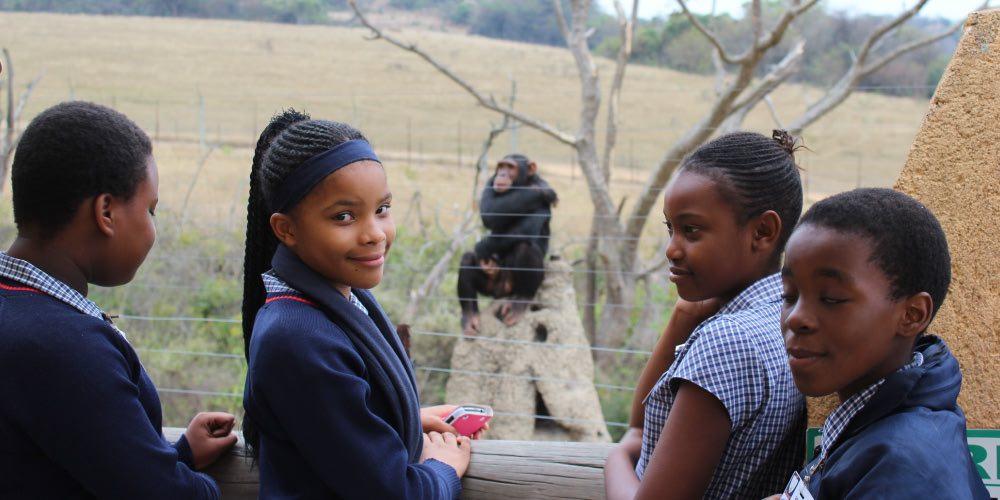 Chimp-eden-Mpumalanga